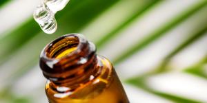 Les huiles essentielles contre les moustiques
